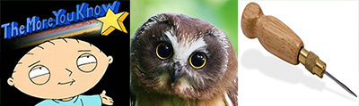 Note: awls and owls are different things